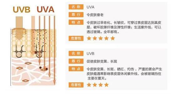 UVB波段作用