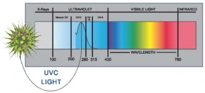 UVC属于杀菌消毒的波段